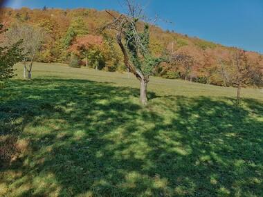 Vente Terrain 49 550m² Pallud (73200) - photo