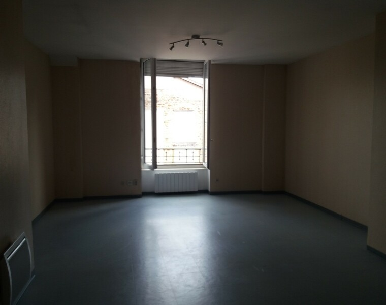 Location Appartement 2 pièces 55m² Thizy (69240) - photo