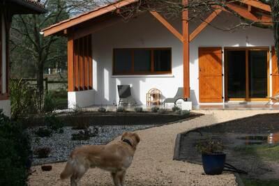 Vente Maison 9 pièces 250m² Messanges (40660) - Photo 4