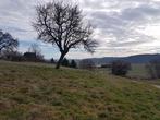 Vente Terrain 1 500m² Champier (38260) - Photo 4