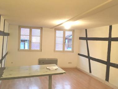 Location Appartement 1 pièce 24m² Sélestat (67600) - photo