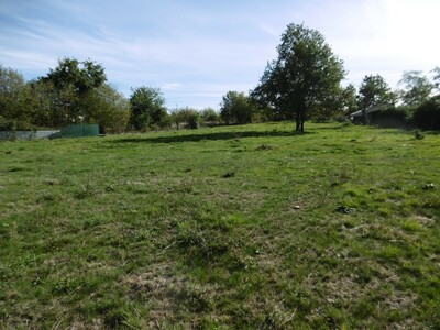 Vente Terrain 1 778m² Domaize (63520) - photo