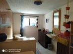 Location Maison 4 pièces 100m² La Saline-les-Hauts (97422) - Photo 6