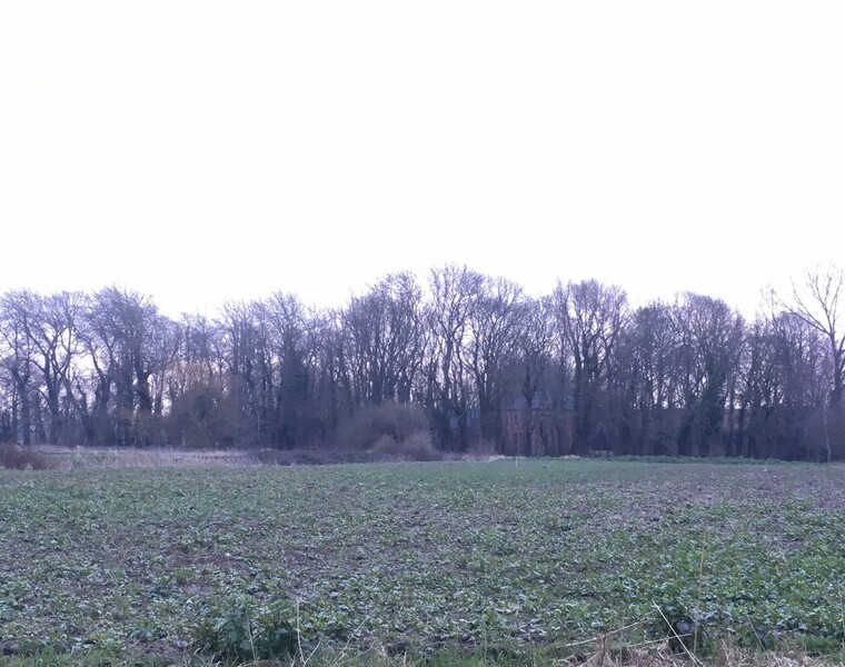 Vente Terrain 1 250m² Lestrem (62136) - photo