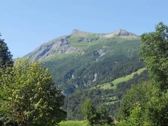 Vente Terrain 948m² Saint-Gervais-les-Bains (74170) - photo 2