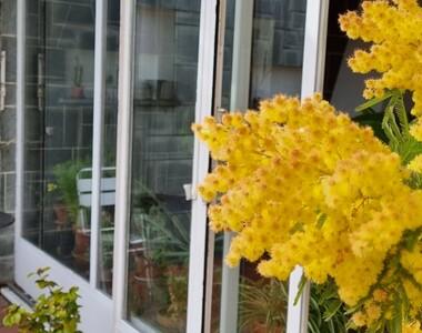 Vente Maison 8 pièces 145m² Le Havre (76620) - photo