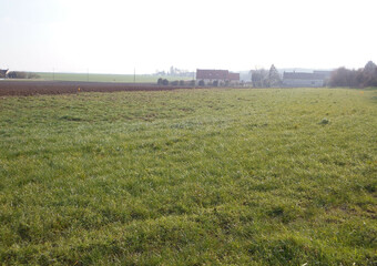 Vente Terrain 5 KM EGREVILLE - photo
