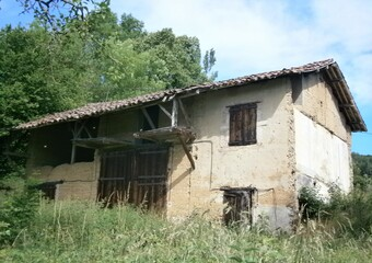 Vente Maison 170m² Le Pin (38730) - photo