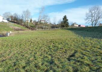 Vente Terrain 700m² Sainte-Sigolène (43600) - photo