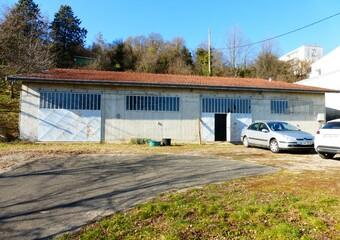 Vente Local industriel 1 pièce 260m² Beaurepaire (38270) - photo