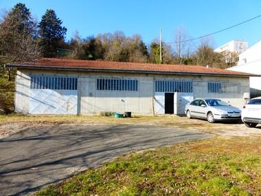 Vente Local industriel 1 pièce 260m² Beaurepaire (38270) - photo