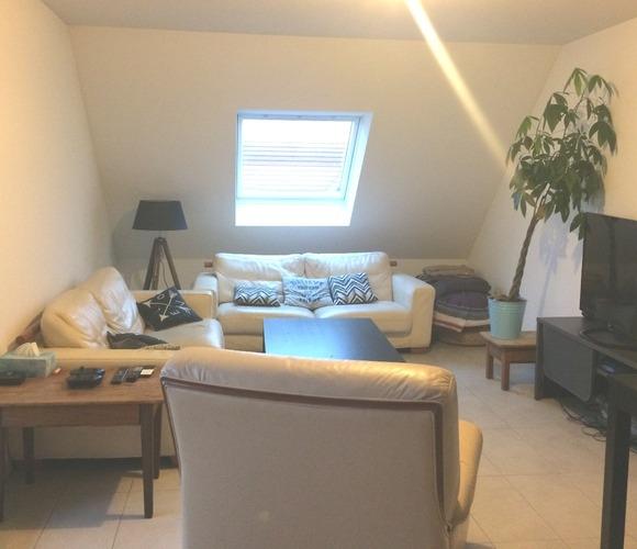 Location Appartement 3 pièces 68m² Châtenois (67730) - photo