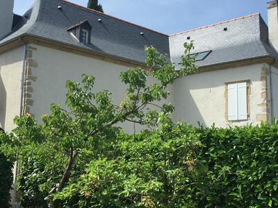 Vente Maison 8 pièces 210m² Beuste (64800) - Photo 1