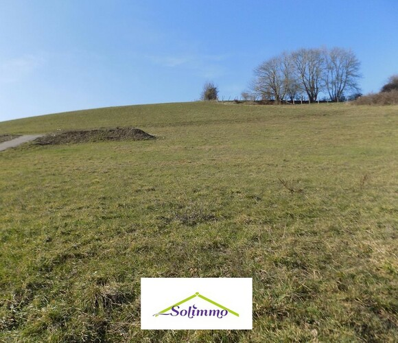 Vente Terrain 934m² Belmont (38690) - photo