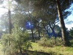 Vente Terrain Puget (84360) - Photo 4