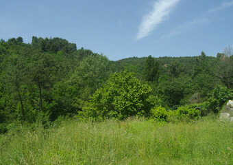Vente Terrain 816m² Mercuer (07200) - Photo 1