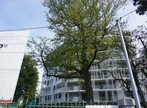Location Appartement 2 pièces 46m² Pau (64000) - Photo 1