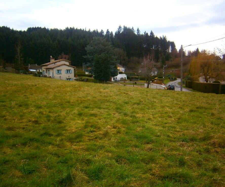 Vente Terrain 1 300m² Cours-la-Ville (69470) - photo