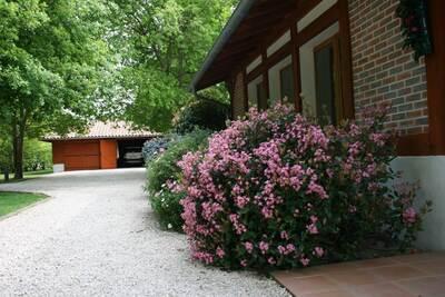 Vente Maison 9 pièces 250m² Messanges (40660) - Photo 5