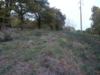 Vente Terrain 1 210m² Savenay (44260) - Photo 1