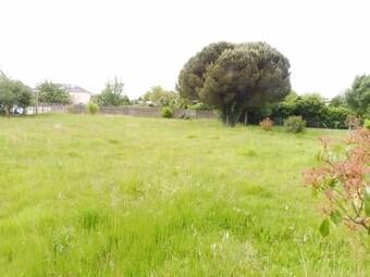 Vente Terrain 364m² Donges (44480) - photo