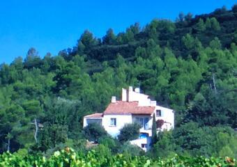 Sale House 9 rooms 250m² Mirabeau (84120) - photo