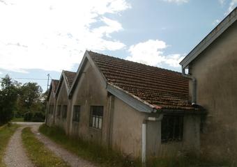Vente Local industriel 3 pièces 400m² Luxeuil-les-Bains (70300) - photo