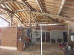Vente Maison 10 pièces 240m² L'Isle-en-Dodon (31230) - Photo 13