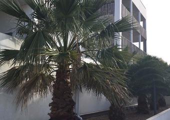 Location Appartement 2 pièces 37m² Bayonne (64100) - photo
