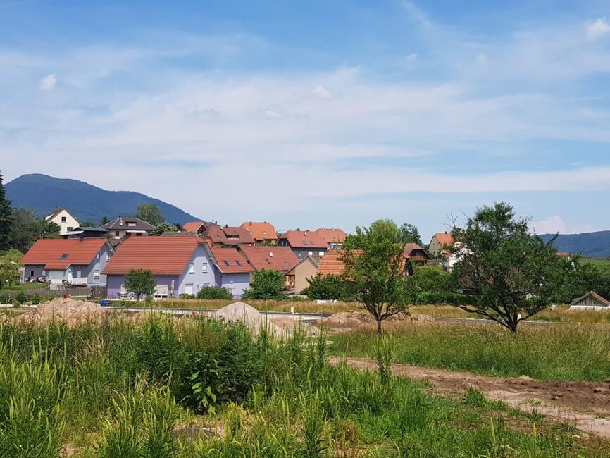 Vente Terrain 370m² Dieffenbach-au-Val - photo