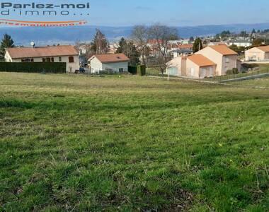 Vente Terrain 1 000m² Monistrol-sur-Loire (43120) - photo