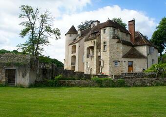 Vente Maison 12 pièces 348m² Argenton-sur-Creuse (36200) - photo