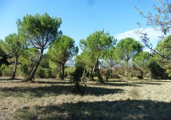 Vente Terrain 1 000m² Mirmande (26270) - Photo 1