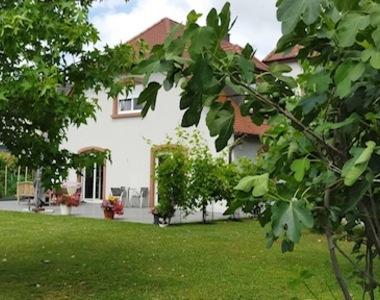 Vente Maison 8 pièces 220m² Souffelweyersheim (67460) - photo