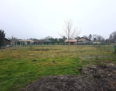 Vente Terrain 800m² Audenge (33980) - photo