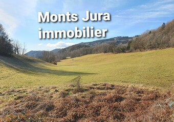 Vente Terrain 830m² Champfromier (01410) - photo