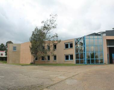 Location Local industriel 2 252m² Brindas (69126) - photo