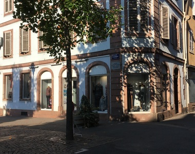 Location Local commercial 75m² Sélestat (67600) - photo