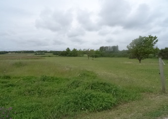 Vente Terrain 5 000m² Saint-Just-Luzac (17320) - photo