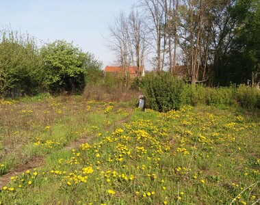 Vente Terrain 1 225m² Dainville (62000) - photo