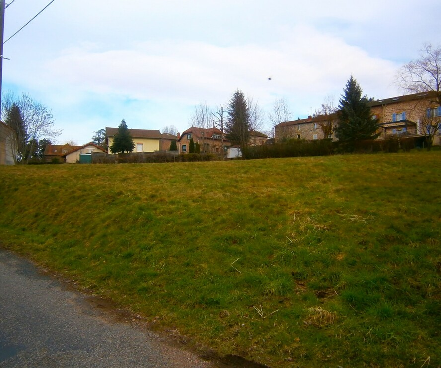 Vente Terrain 1 325m² Cours-la-Ville (69470) - photo