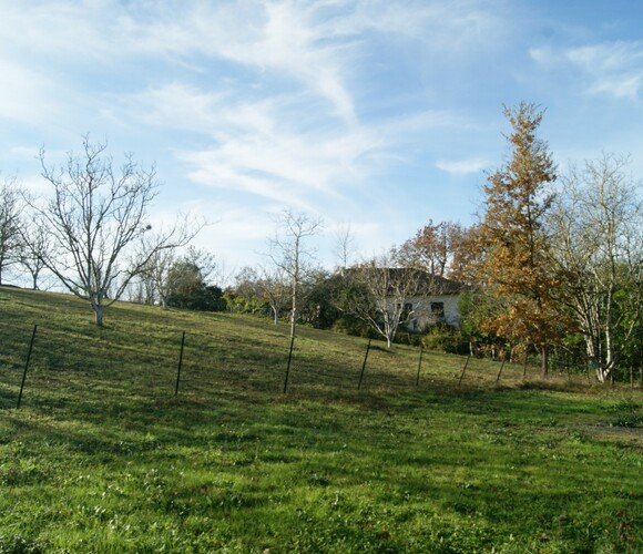 Vente Terrain 1 226m² SECTEUR GIMONT - photo