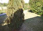 Vente Maison 6 pièces 150m² Aillevillers-et-Lyaumont (70320) - Photo 3