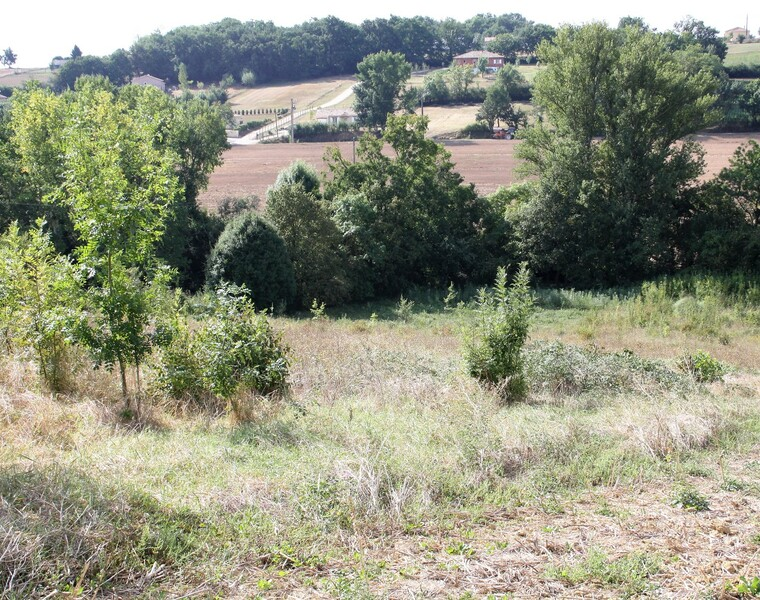 Vente Terrain 4 000m² SECTEUR SAMATAN-LOMBEZ - photo