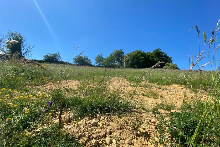 Vente Terrain 1 111m² Montrigaud (26350) - photo