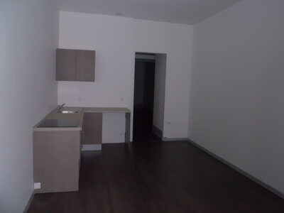 Location Appartement 3 pièces 51m² Saint-Étienne (42100) - Photo 6