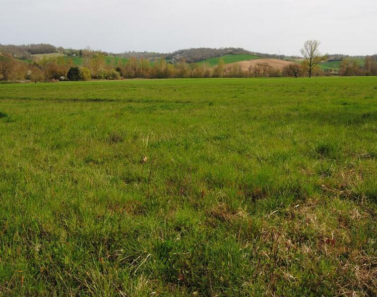 Vente Terrain 35 500m² SECTEUR SAMATAN-LOMBEZ - photo