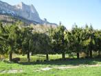 Sale Land 1 000m² Saint Hilaire du Touvet (38660) - Photo 3