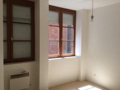 Location Appartement 2 pièces 49m² Saint-Étienne (42000) - Photo 5