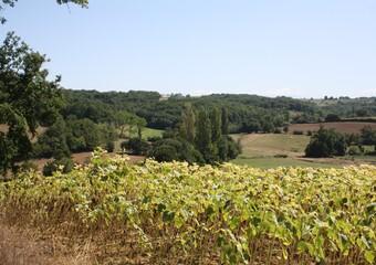 Sale Land 5 000m² L'Isle-en-Dodon (31230)